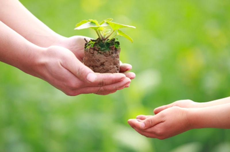 Consejos para ser eco-amigable con el ambiente